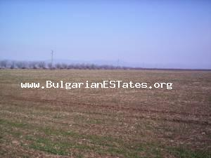 Land for sale located at the village of Pirne in Bourgas region.