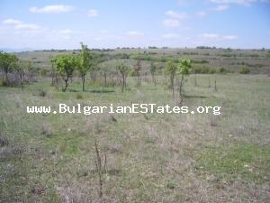 Extremely cheap plot of land for sale located close to the hamlet of Georgi Dobrevo in Svilengrad region.