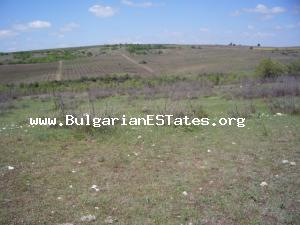 Amazing offer – huge piece of land for sale close to the village of Georgi Dobrevo in Svilengrad region.