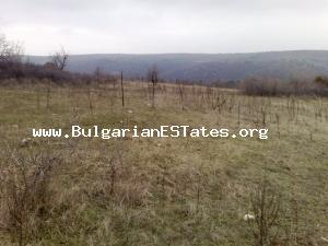 Amazing offer – for sale is a huge plot of agricultural land in very good price for that region.