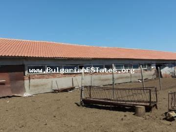 Farm property for sale in the village of Zimnitsa, 90 km from Burgas and 10 km from the town of Yambol.